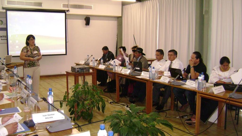 Dra. Mirva Aranda en Plenaria