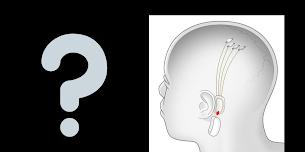 Neuralink Nedir ?