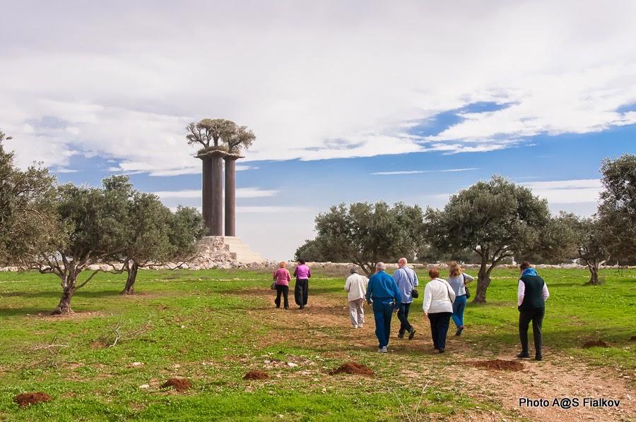 Парк оливковых деревьев в кибуце Рамат Рахель возле Иерусалима. Экскурсия Светланы Фиалковой
