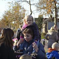 Sint2013032