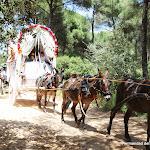 CaminandoalRocio2011_484.JPG