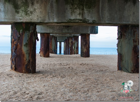 Wordless Wednesday September 5th Pier (©Jenny @ Flutterbye Chronicles)