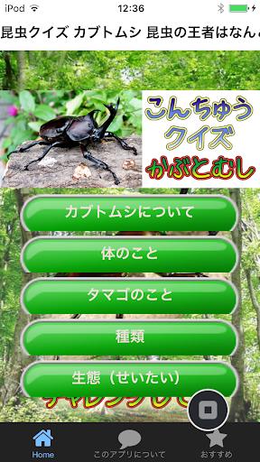 昆虫クイズ カブトムシ 昆虫の王者はなんといってもカブトムシ