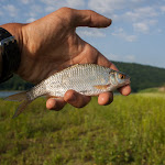 20160620_Fishing_Bakota_020.jpg