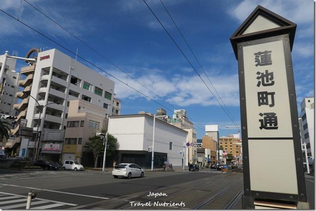 日本四國 高知日曜市 (4)