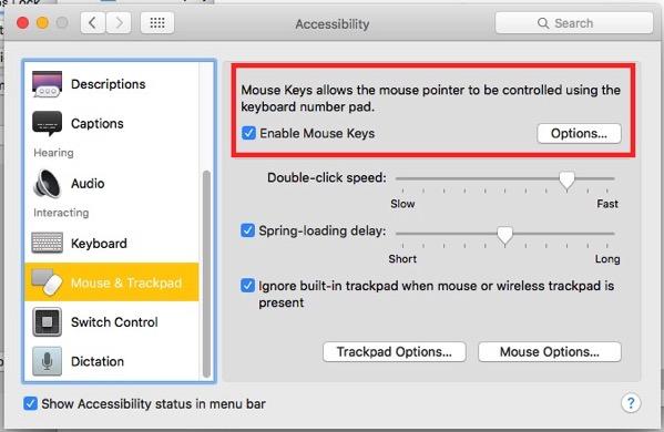 Mouse Keys On