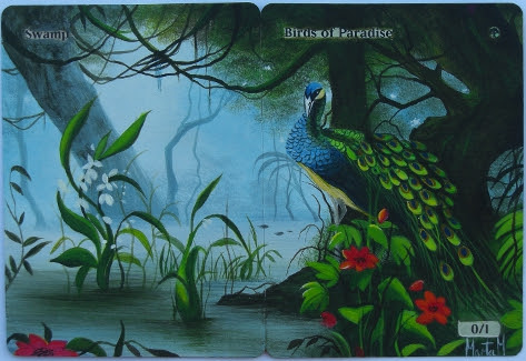 Swamp Birds of Paradise magic the gathering card art altered mtg art panorama magic card art altered artwork mtg card art  Oiseaux de paradis Uccelli del Paradiso 極楽鳥 天堂鳥 Paradiesvögel Aves del paraíso Райские Птицы 天堂鸟 Aves do Paraíso magic the gathering land art