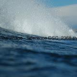 DSC_2368.thumb.jpg