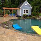 Organic Gunite Pool with Special Concrete Deck
