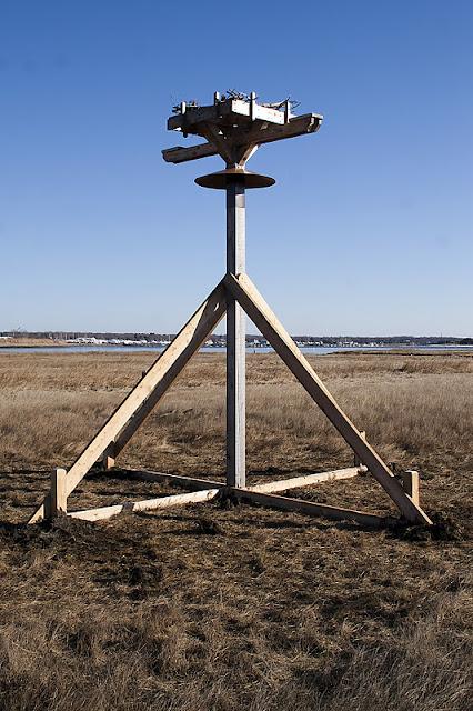 Osprey Platform 1/15/12 - IMG_5195.jpg