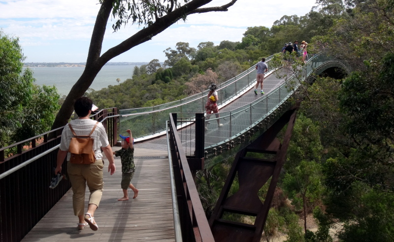 Federation Walkway in Kings Park