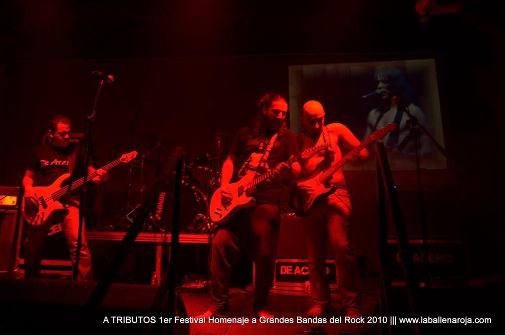 A TRIBUTOS 1er Festival Homenaje a Grandes Bandas del Rock 2010 - DSC_0124.jpg