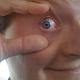 Pascal Scheffers's profile photo