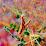brent pearson's profile photo