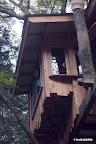 ベースは日本古来の軸組構造のツリーハウス。板も柱もその殆どが、先代から残された当地の材木を、使えるように清掃、加工して作られた。元々日本では、次世代のために育てた木々を伐採、乾燥、製材までして貯めていたものだ。それが今は建設業者に使えないといわれ朽ちていく。ばかばかしい時代だ。