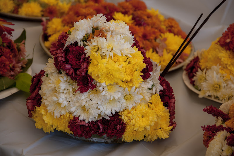 TeNA Boston Bathukamma 2015 Celebrations - 6.jpg