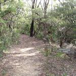 Tarpeian Rock track near cliff drive (93841)