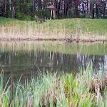 20140421_Fishing_Hodosy_016.jpg