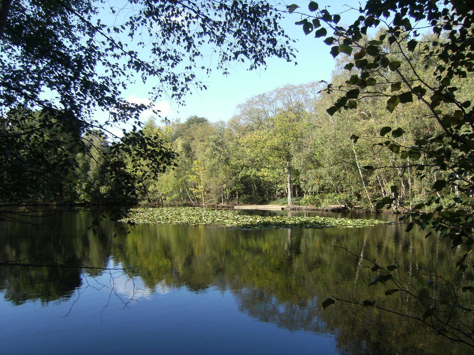 DSCF0109 Heath Pond