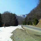 22 martie 2012 019.jpg