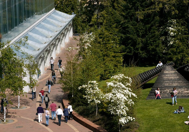 With an enrollment of 13,000 students, Western Washington University is large enough to offer tremendous choice in academic programs, people to meet, and things to do, yet small enough that you won't get lost in the crowd. / Credit: Western Washington University