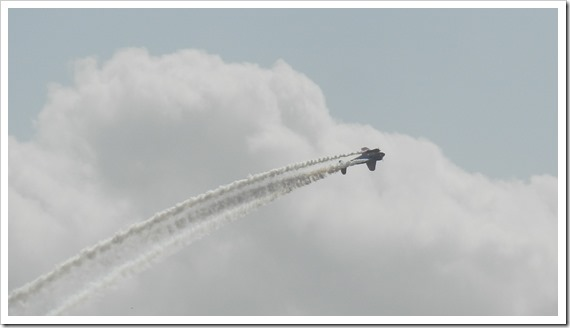 Stunt Planes Matt Younkin Beech 18 (1)