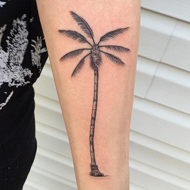 simples_palmeira_antebraço_tatuagem