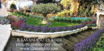 Progetti giardini online gratis progetti giardini privati for Rendering giardino