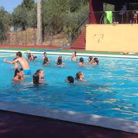 Pàdel i piscina segona setmana