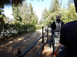 On the trestle!