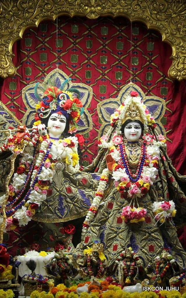 ISKCON Juhu Sringar Deity Darshan on 24th June 2016 (15)