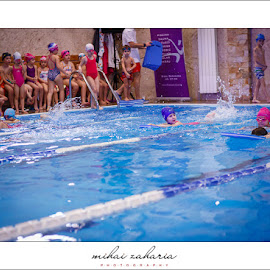 20161217-Little-Swimmers-IV-concurs-0029