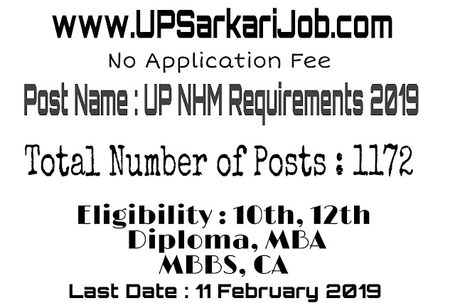UP NHM Various 1172 Posts Recruitment 2019 : No Fee