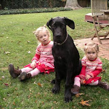 The Dynamite Danes Family! - image003.jpg