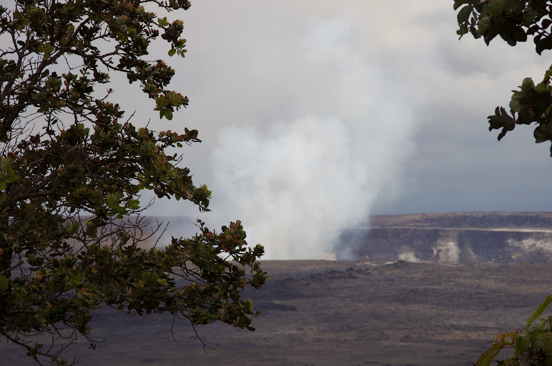 06-20-13 Hawaii Volcanoes National Park - IMGP7839.JPG