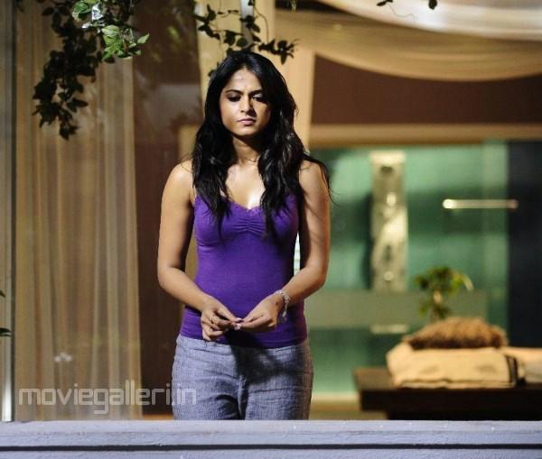 Hot Indian Actress Exclusive Tollywood Kollywood Actress Anushkaanuskha Shetty -3994