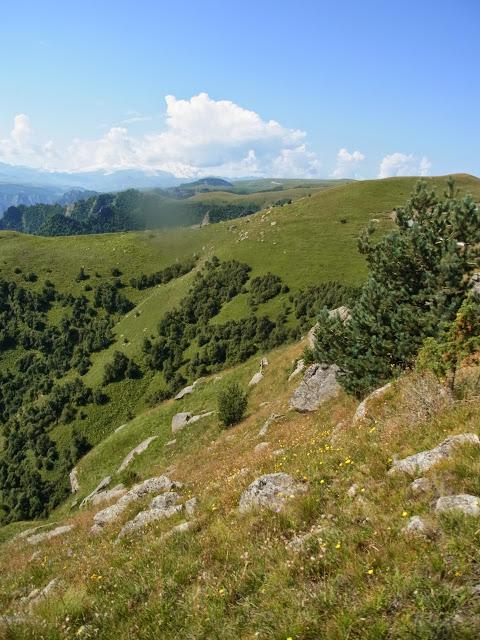 Khasaut (2000 m), au sud-ouest de Kislovodsk (Karatchaïevo-Tcherkesskaïa), 16 août 2014. Photo : J. Michel