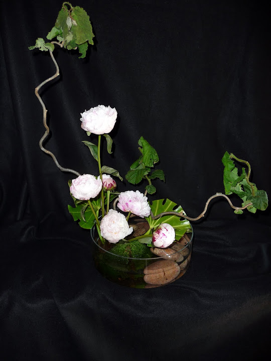 fleur - P1020445.JPG