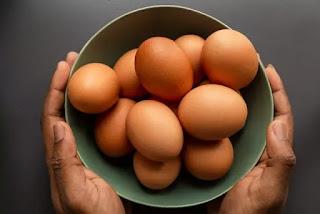 मुर्गी पालन का व्यापार शुरू कैसे करें - How to start poultry farming in India in hindi 2021