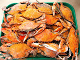 Maryland: Crab