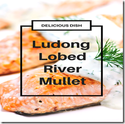 Ludong Delicious Fish Dish