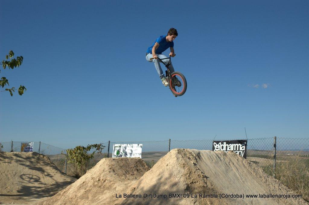 Ballena Dirt Jump BMX 2009 - BMX_09_0051.jpg
