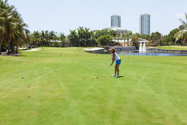 2015 Golf Tournament - 2015%2BLAAIA%2BConvention-1667.jpg