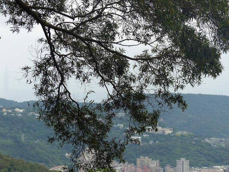Taipei. Petite promenade au départ de Tianmu - rando%2B011.JPG