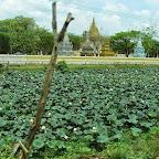 Busfahrt von Siem Reap nach Phnom Penh