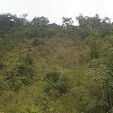 Crocker Range, 20 km nord-ouest de Tambunan (Sabah, Malaisie, Bornéo), 18 août 2011. Photo : J.-M. Gayman