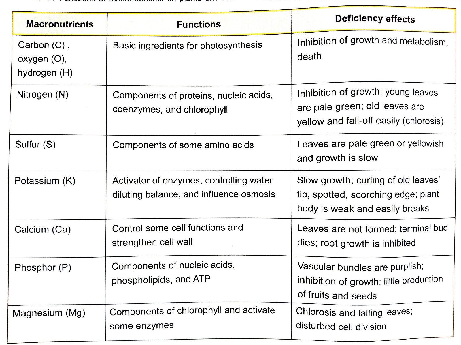 Function Of Macronutrient And Their Deficiencies New Science Biology