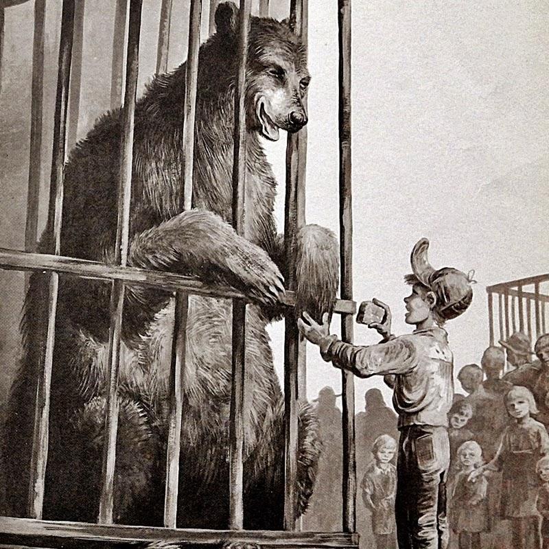 세상에서 가장 커다란 곰