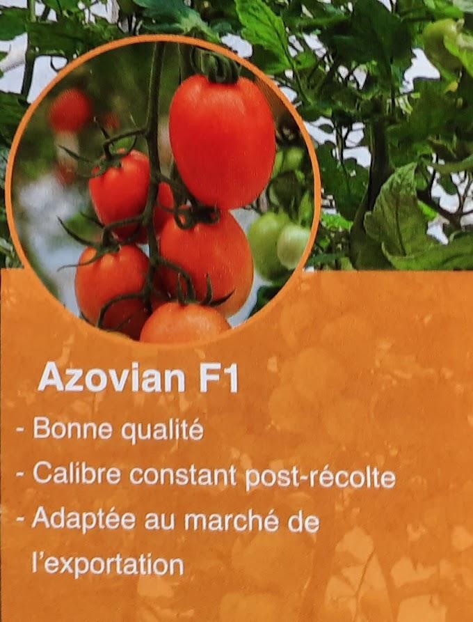Azovian