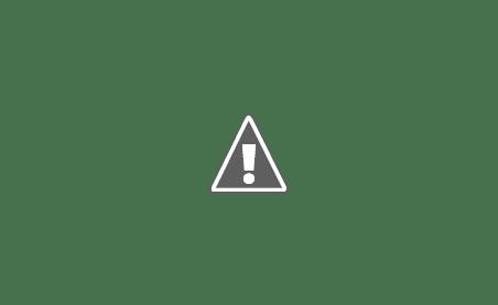 Traditii Ruginoasa Tradiţii !?...